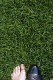 Feet on the lawn Royalty Free Stock Photo