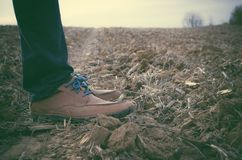 Feet with leather shoes in field Royalty Free Stock Photo