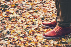 Feet leather sneakers boots walking Outdoor. With yellow fall leaves Autumn season nature on background Lifestyle Fashion concept Stock Photo