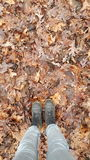 Feet and leaves. Feet on autumn leaves Royalty Free Stock Images