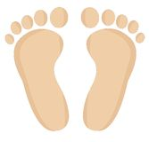 Feet of leg on a white background. Vector  illustration Royalty Free Stock Images