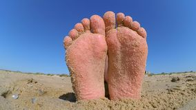 Feet legs strewn sprinkled with sand sanded on the sandy beach. stock video footage