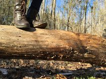 Feet on a log Royalty Free Stock Image
