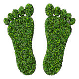 Feet made from green leaves isolated on white background. 3D render. Beautiful graphic made of green leaves on gradient background Royalty Free Stock Photos