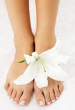 Feet with madonna lily Stock Photography
