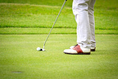 Feet of male golf player putting at green. Grass, golf course Stock Photography
