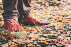 Feet Man leather sneakers walking in park Royalty Free Stock Images