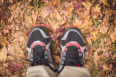 Feet Man stand on fall leaves Outdoor Royalty Free Stock Photography