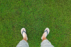 Feet of the man standing on green grass Royalty Free Stock Photography