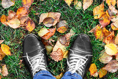 Feet Man walking on fall yellow leaves. Lifestyle, Fashion and trendy style. Advertising shoes. Autumn collection. Stock Images