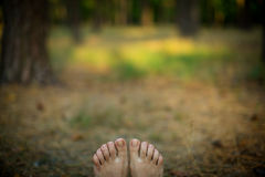 Feet on the nature. Background Stock Photography