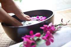 Feet in orchid spa bowl Stock Images