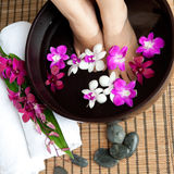 Feet in orchid spa bowl royalty free stock photos