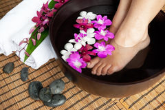 Feet in orchid spa bowl Royalty Free Stock Photo