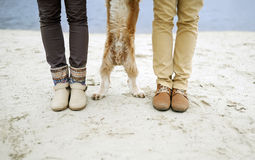 Feet and paws. The guy, the girl and dog - feet and paws Stock Images