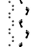 Feet and paws,seamless Stock Photography