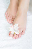 Feet with pedicure and flowers Royalty Free Stock Images