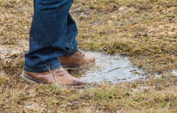 Feet of a person standing in a puddle of water. Feet of a person wearing lace up shoes and blue denim jeans standing in a puddle of water in short scrubby grass Royalty Free Stock Images