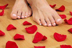 Feet and petals Royalty Free Stock Photos