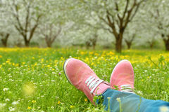 Feet in pink shoes on green field Royalty Free Stock Photos