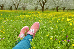 Feet in pink shoes on green field Royalty Free Stock Photo
