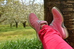 Feet in pink shoes on green field Stock Image