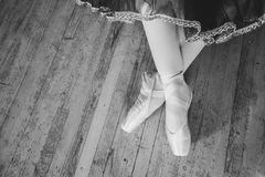 Feet in Pointe shoes on the floor. Beautiful legs of young ballerina who puts on pointe shoes at white wooden floor background, top view from above with copy royalty free stock image