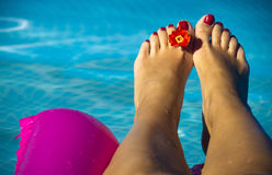 Feet pool. Women's feet with flower in pool Stock Photography