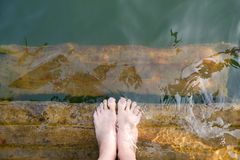 Feet and Purple Pedicure of Woman in Green Water, Top view. Beautiful Asian Young Female Body Legs and Barefoot on a Wooden Bridge royalty free stock photo