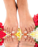 Feet qnd roses Stock Image