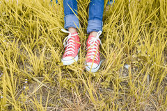 Feet red sneaker a girl in nature Royalty Free Stock Photo