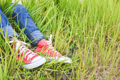 Feet red sneaker a girl in nature Royalty Free Stock Images