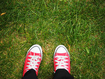 Feet in red sneakers on green grass, top view Stock Photos