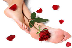 Feet and Rose Royalty Free Stock Photos