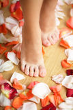 Feet and rose petals Royalty Free Stock Photo