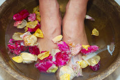 Feet and rose-petals Royalty Free Stock Image