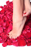 Feet and rose-petals royalty free stock photography