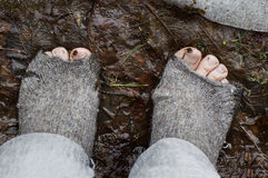 Feet In Rugged Socks. Bare feet in ragged woolen socks standing in mud and fallen leaves, concept of poverty Royalty Free Stock Image