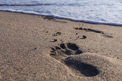 Feet in sand stock photos