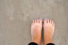 Feet on a sand Stock Image