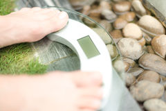 Feet on scale over green lawn and wet pebble. Royalty Free Stock Photo