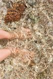 Feet in seawater. The bottom of the sea is well visible. The water is clear royalty free stock image