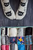 Feet selfie with black and white socks and a socks organizer on a dark background. Top view. Feet selfie with black and white socks and a socks organizer on a Stock Photos