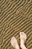 Feet in shallow water Stock Images