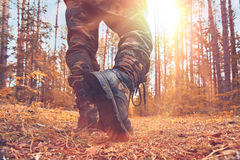 Feet in shoes autumn forest Royalty Free Stock Images