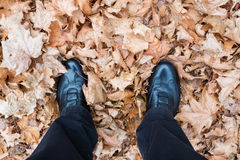 Feet with shoes on dried leaves of a maple tree Stock Images