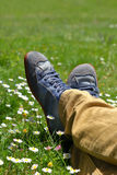 Feet in shoes on green field. With flowers Royalty Free Stock Photo