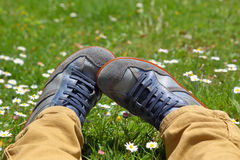 Feet in shoes on green field. With flowers Stock Photography