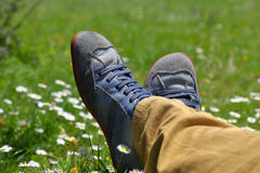 Feet in shoes on green field. With flowers Royalty Free Stock Images