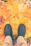 Feet shoes walking in nature. Male legs in boots on autumn leaves. Filtered image with copy space Stock Images